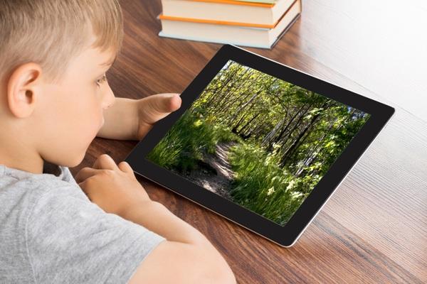 bambino tablet bosco bassa