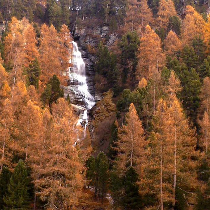ambiente montagna autunno